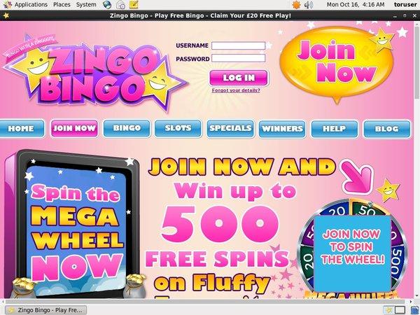 Zingo Bingo Registrer Dig